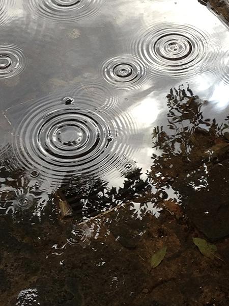 piove, la goccia cesella l'argento